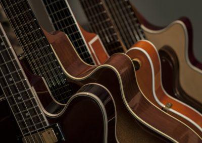 The Guitar Immersion Program